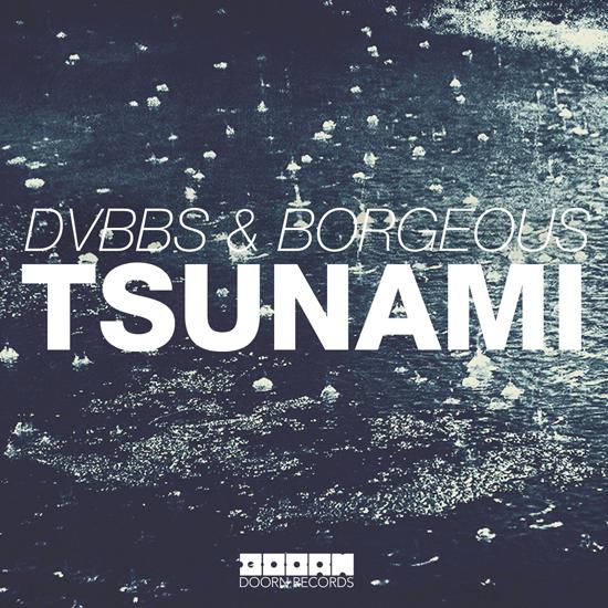 tsunami 2013_raannt
