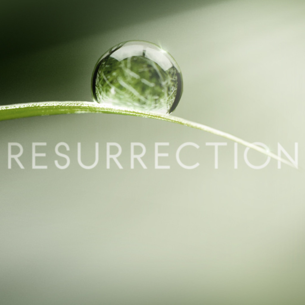 resurrection tv show abc_raannt