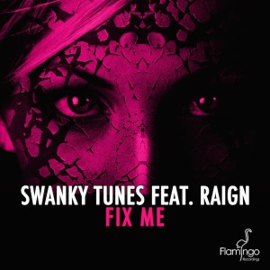 swanky tunes feat raign fix me official_raannt