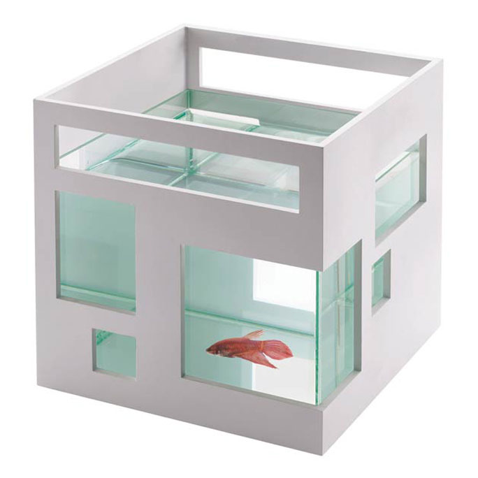 fish hotel cool fish aquarium_raannt